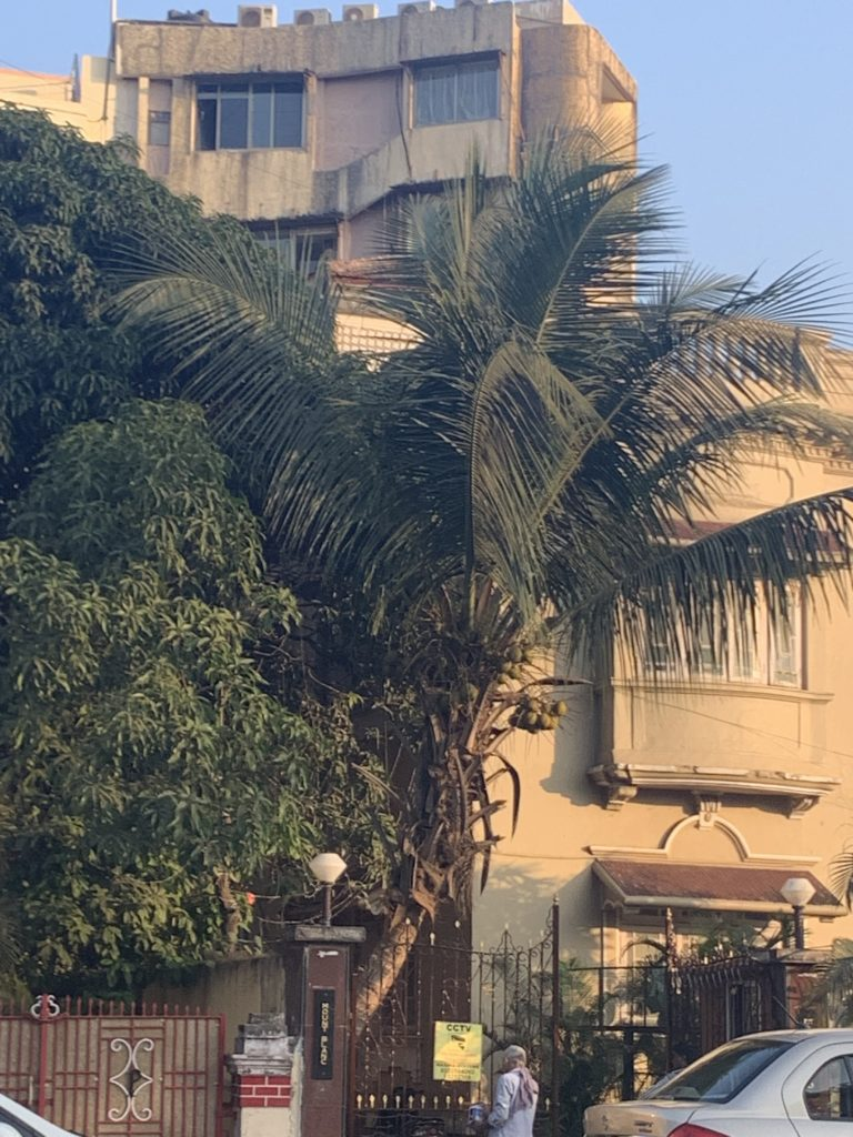 Sushant shifted in Bandra flat 6 months ago, was to reside here ...